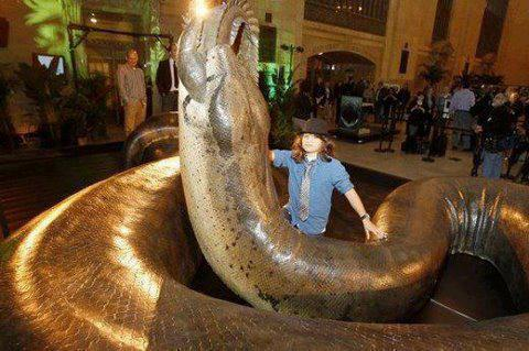 Inilah ular terbesar di dunia herlansajas blog seandainya ular ini masih ada dan berkeliaran di muka bumi mungkin makanannya bisa saja seekor gajah dewasa ular itu diperkirakan mempunyai tubuh sepanjang reheart Images